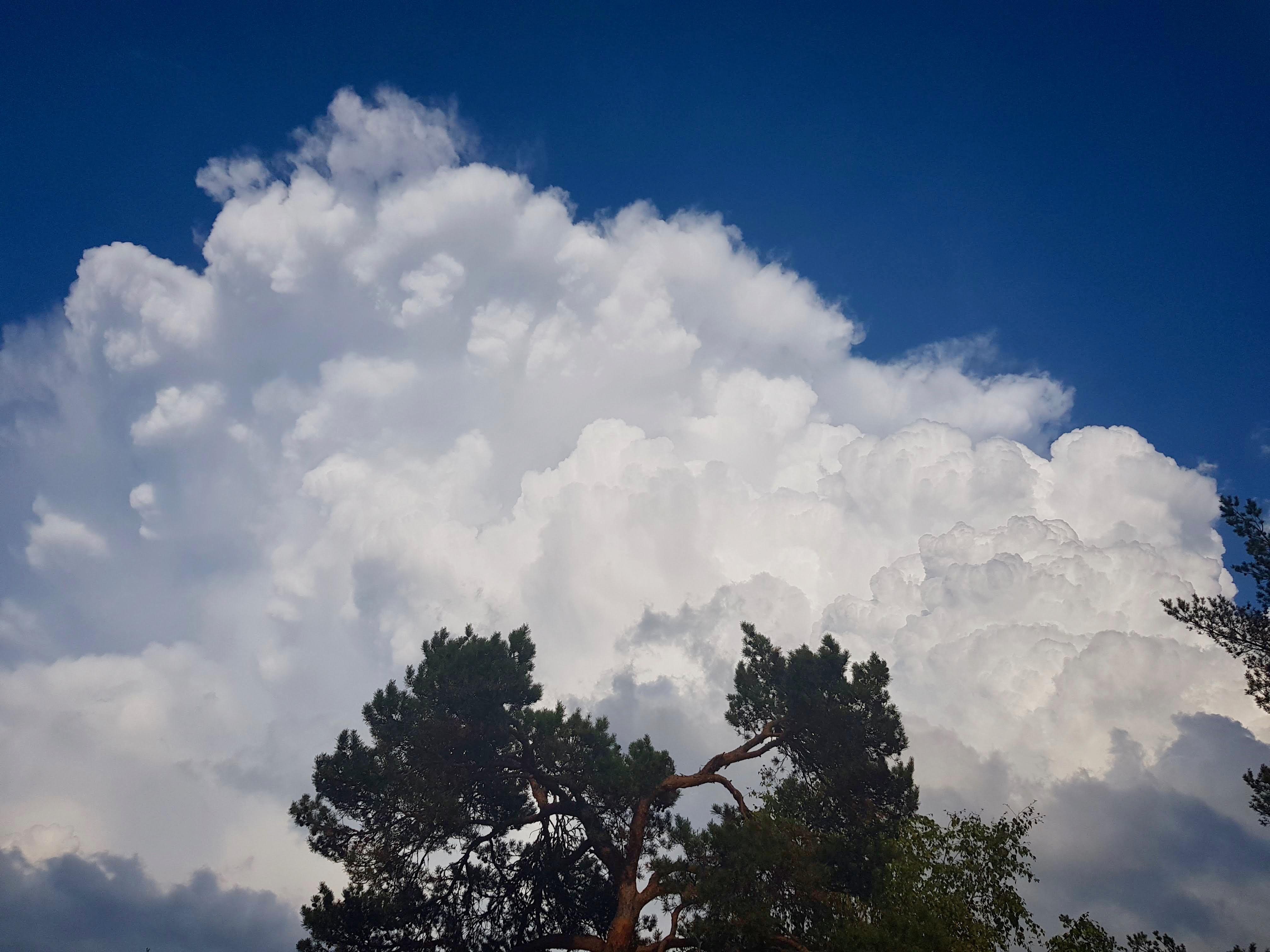 Cloud by Ingemar Pongratz
