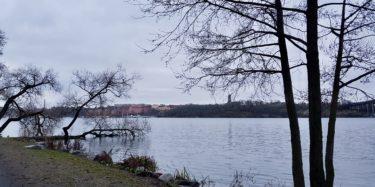 Stockholm winterwalk by Ingemar Pongratz